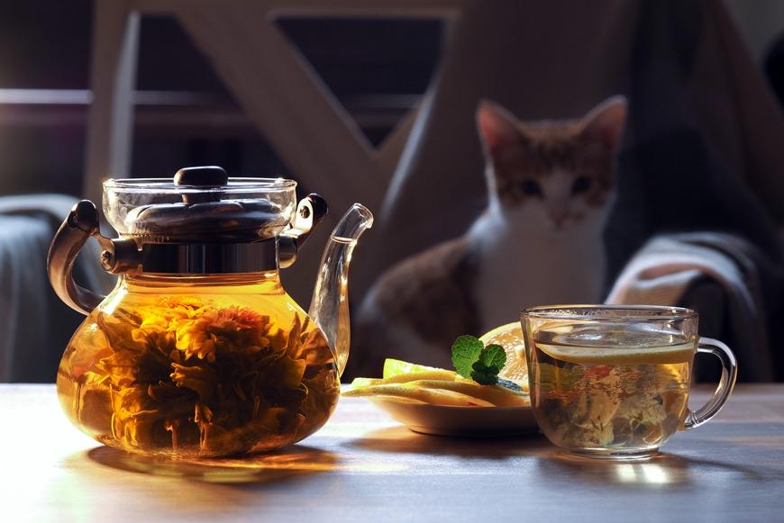 какой заварной чай подходит лучше для шашлыка
